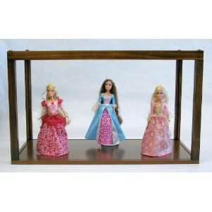 Clear Display Case for Dolls Art Trains Cars Awards
