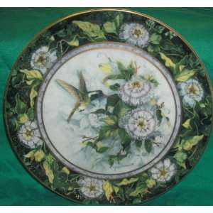 Franklin Mint Royal Doulton The White Eared Hummingbird Plate