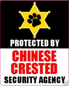 PROTECTED BY CHINESE CRESTED SECURITY AGENCY STICKER