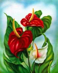 Ted Mundorff Anthurium Hawaiian Tropical Flower Floral Botanical