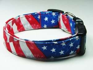 Charming Fireworks Red, White & Blue Dog Collar Medium