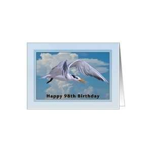 Happy Birthday, 98th, Royal Tern Bird Card Toys & Games