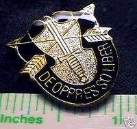 SPECIAL FORCE VIETNAM DISTINCTIVE UNIT GREEN BERET PIN