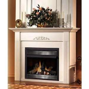 Napoleon Gvf36 Vent Free Propane Gas Fireplace