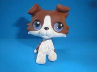 Littlest Pet Shop Rare Chocolate Brown & White Collie Puppy Dog w
