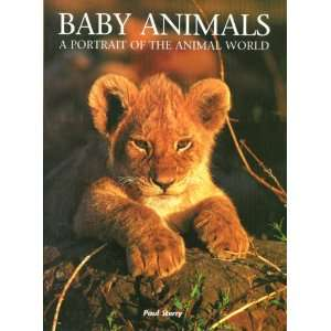 Baby Animals A Portrait of the Animal World