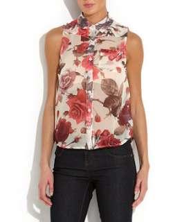 Cream (Cream) Parisian Sheer Rose Print Blouse  257436813  New Look