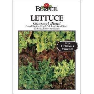 Burpee Lettuce Leaf Gourmet Blend Seed 63511