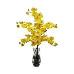Phalaenopsis with Vase Silk Flower Arrangement   Nearly