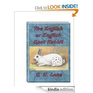 The English Rabbit: C.H. Lane:  Kindle Store