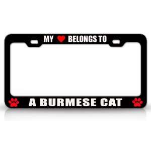 MY HEART BELONGS TO A BURMESE Cat Pet Auto License Plate