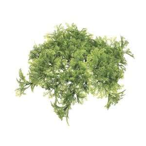 Moss Hanging Pot Cover Light Green (Pack of 12)