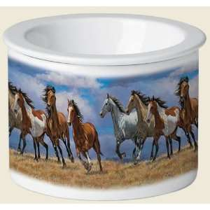 Over the Top Horse Theme Kitchen Dip Chiller  Kitchen