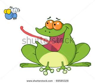 Frog And Fly Cartoon Character Stock Vector 69585328 : Shutterstock